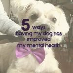 5 ways having my dog has improved my mental health